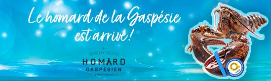 Homard de Gaspésie